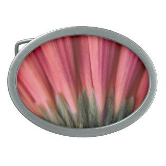 抽象的なマクロ赤く、ピンクのガーベラの花 卵形バックル