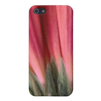 抽象的なマクロ赤く、ピンクのガーベラの花 iPhone SE/5/5sケース