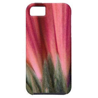 抽象的なマクロ赤く、ピンクのガーベラの花 iPhone SE/5/5s ケース