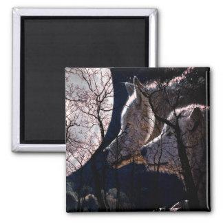 抽象的な月の森林オオカミの木の冷蔵庫用マグネット マグネット