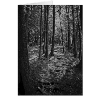 抽象的な森林 カード
