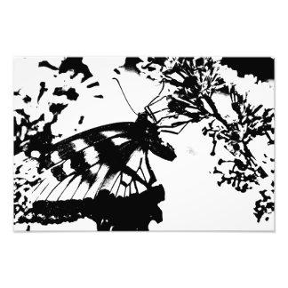 抽象的な白黒蝶プリント フォトプリント