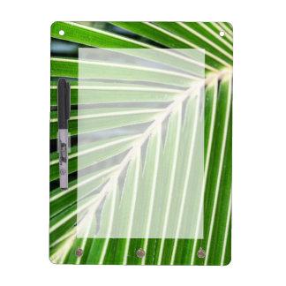 抽象的な緑のシュロの葉 ホワイトボード