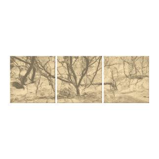 抽象美術の雪の塵の薄暗がりの木 キャンバスプリント