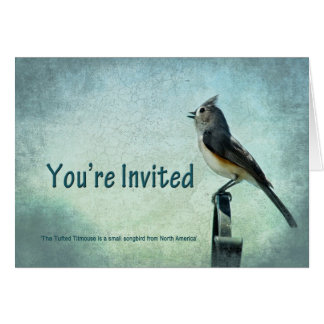 招待状-多目的-シジュウカラ科の鳴き鳥 グリーティングカード