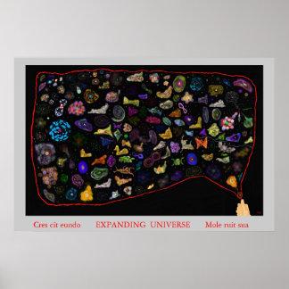拡大の宇宙 ポスター