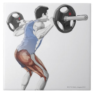 持ち上がるのに人が使用する筋肉のイラストレーション タイル