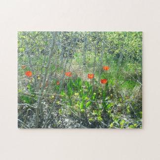 挑戦する赤いチューリップの《植物》アスペンの木のジグソーパズル| ジグソーパズル