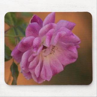 挨りだらけのピンクのバラ マウスパッド