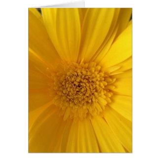 挨拶状 カード