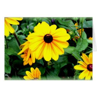 挨拶状: スーザンの黒目の花 カード