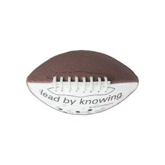 捕獲物-小型フットボール アメリカンフットボール