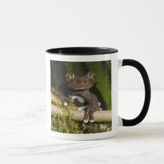 捕虜のTapichalacaのアマガエル(Hyloscirtus マグカップ