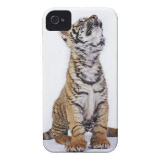 捕虜、南アフリカ共和国2 Case-Mate iPhone 4 ケース