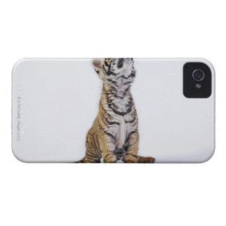 捕虜、南アフリカ共和国 Case-Mate iPhone 4 ケース