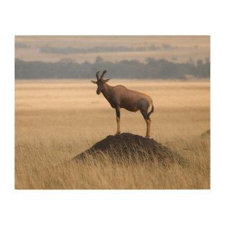 捕食者のための眺望のTsessebeのカモシカ ウッドウォールアート