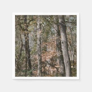 捜すか、または採取する森林木の迷彩柄のカムフラージュの自然 スタンダードカクテルナプキン