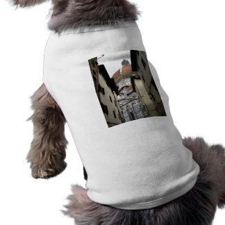 接近のバシリカ会堂 ペット服