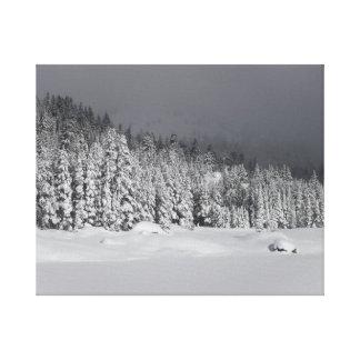 接近の雪の嵐のキャンバスのプリント キャンバスプリント