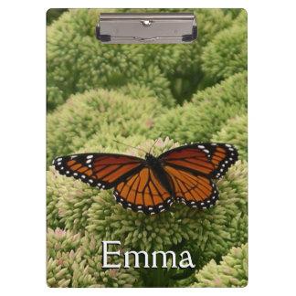 提督の蝶美しい自然の写真撮影 クリップボード