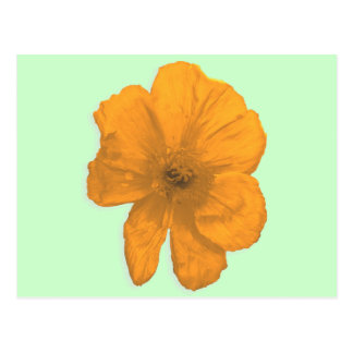 援助のPopArtのオレンジ花 ポストカード