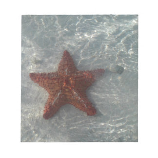 揺らめく星の魚 ノートパッド