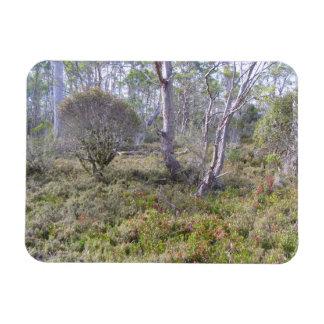 揺りかご山の森林 マグネット