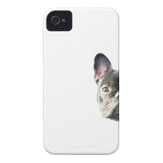 」携帯電話の箱をかいま見ているフレンチ・ブルドッグ「 Case-Mate iPhone 4 ケース