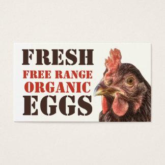 放し飼いのオーガニックな卵-層の鶏 名刺