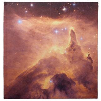 放出星雲NGC6357 ナプキンクロス