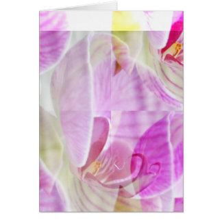 敏感で、美しい蘭の花柄 カード