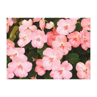 敏感なピンクの春の花 キャンバスプリント