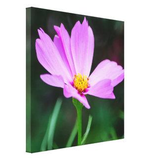 敏感なピンクの花のキャンバスプリント キャンバスプリント