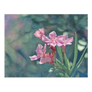敏感なピンクの花 ポストカード