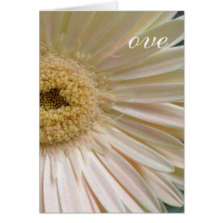敏感な愛 カード