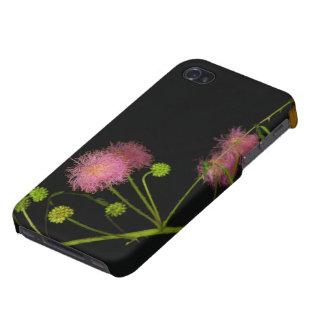 敏感なBrier iPhone 4/4S ケース