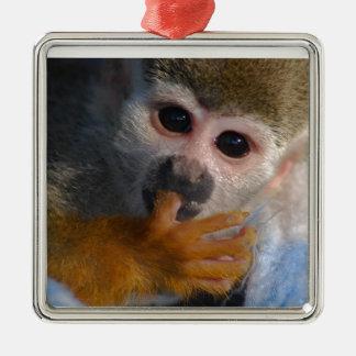 救助されるかわいいベビー猿 メタルオーナメント
