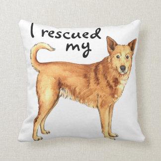 救助のCanaan犬 クッション