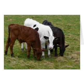 数々の牛tural カード