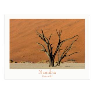 文字が付いているナミビア- Sossusvleiの砂漠の郵便はがき ポストカード