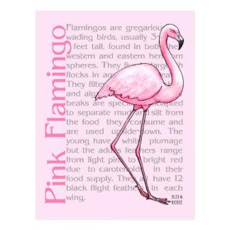 文字のピンクのフラミンゴ ポストカード