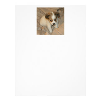 文房具、愛らしく白い子犬 レターヘッド