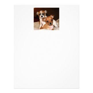 文房具、2匹の愛らしい子犬 レターヘッド