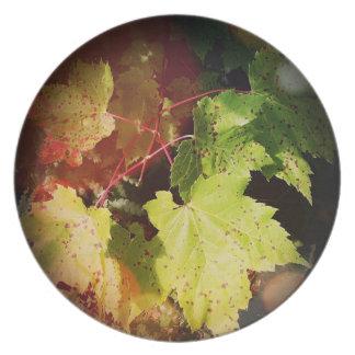 斑入りの紅葉のメラミンプレート プレート