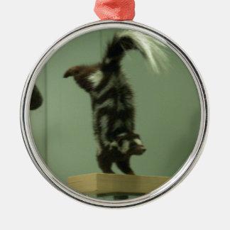 斑点を付けられたスカンク; 博物館の展示物 メタルオーナメント