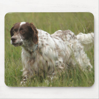 斑点を付けられた英国セッター犬のマウスパッド マウスパッド