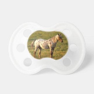 斑点を付けられた馬の種馬 おしゃぶり