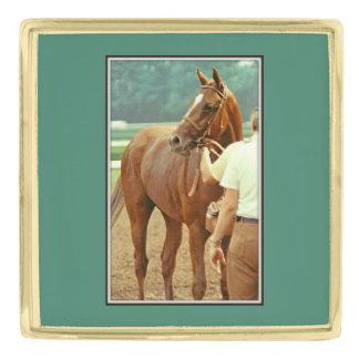 断言された純血種の競馬馬1978年 金色 ラペルピン