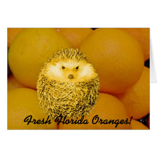 新しいオレンジハリネズミ カード