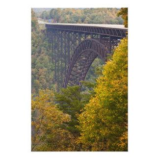 新しい川峡谷橋、新しい川の峡谷 フォトプリント